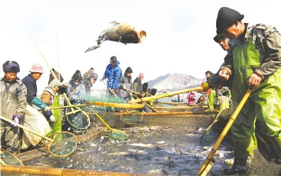"""2018长塘捕鱼节""""开网"""""""